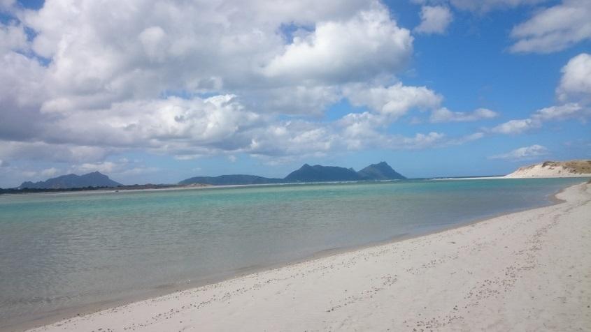 ニュージーランドビーチルアカカ